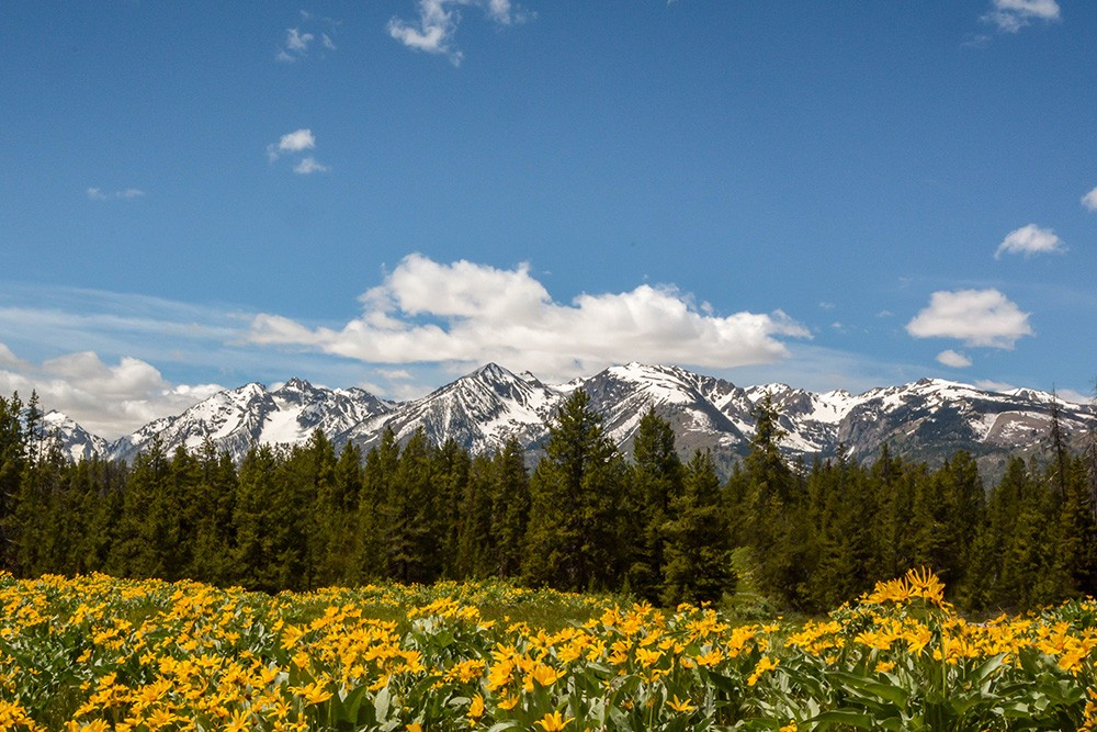 How to Add Text in Lightroom