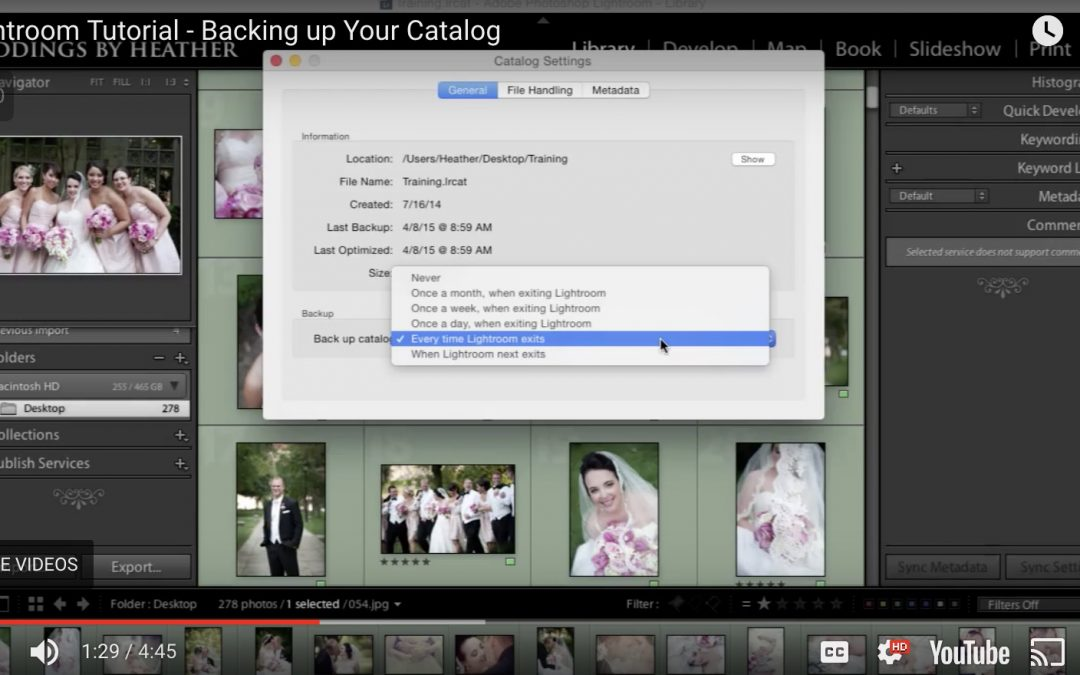 Lightroom Tutorial – Backing up Catalogs