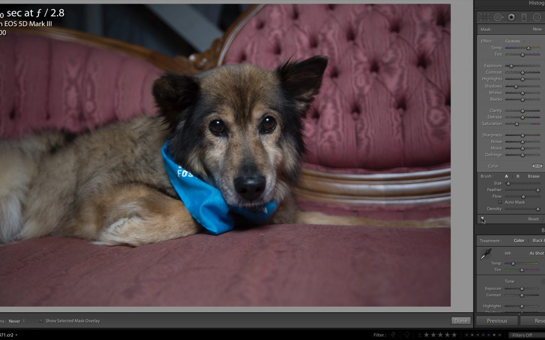 Removing Cataracts in Lightroom