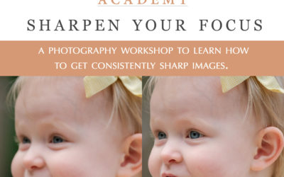 Sharpen Your Focus Workshop